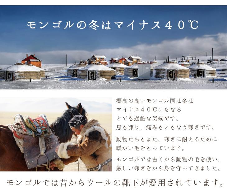 モンゴルの冬はマイナス40℃ 標高の高いモンゴル国は冬はマイナス40℃にもなるとても過酷な気候です。息も凍り、痛みもともなう寒さです。動物たちもまた、寒さに耐えるために暖かい毛をもっています。モンゴルでは古くから動物の毛を使い、厳しい寒さをから身を守ってきました。モンゴルでは昔からウールの靴下が愛用されています。